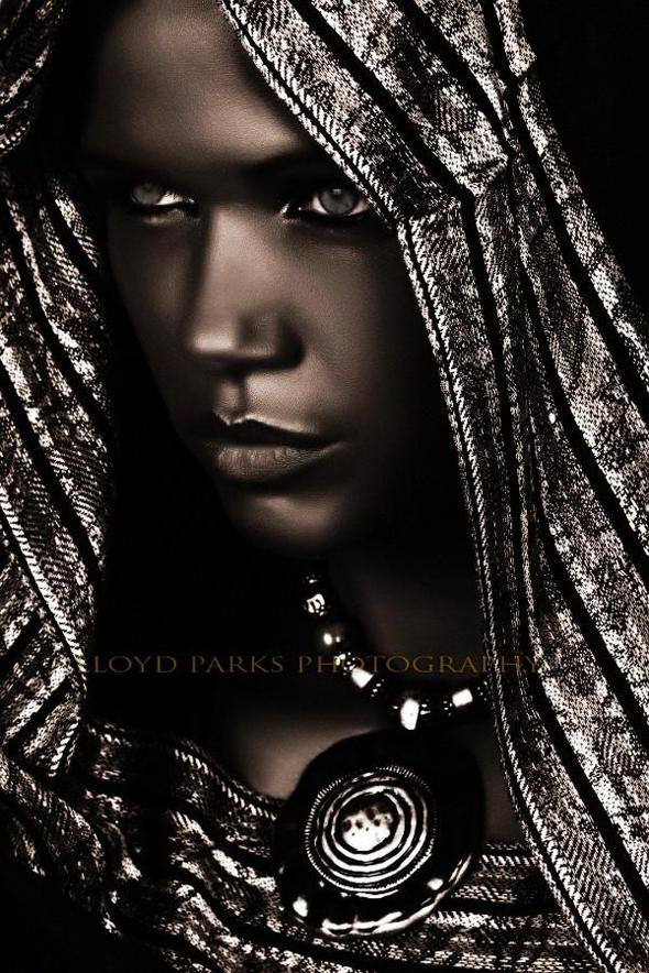 lloyd-parks3