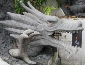 I Am .... a dragon