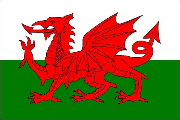 The Welsh Dragon – on the national flag of Wales