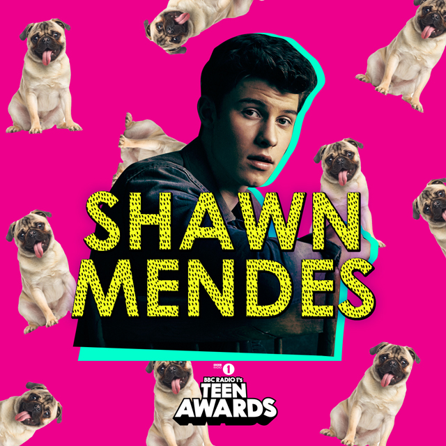 Radio 1's Teen Awards - Shawn Mendes