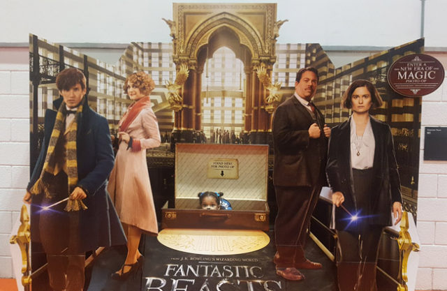 Fantastic Beasts And Where To Find Them Team Up With