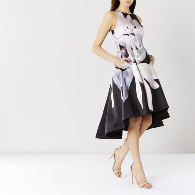 Rosaria Print Dress