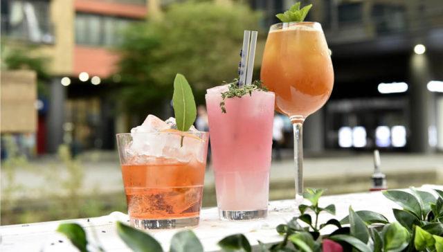botanical bar drinks gin