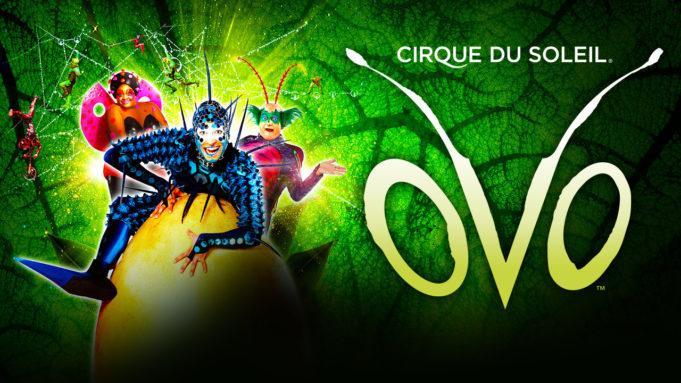 cirque du soleil ovo london discount tickets