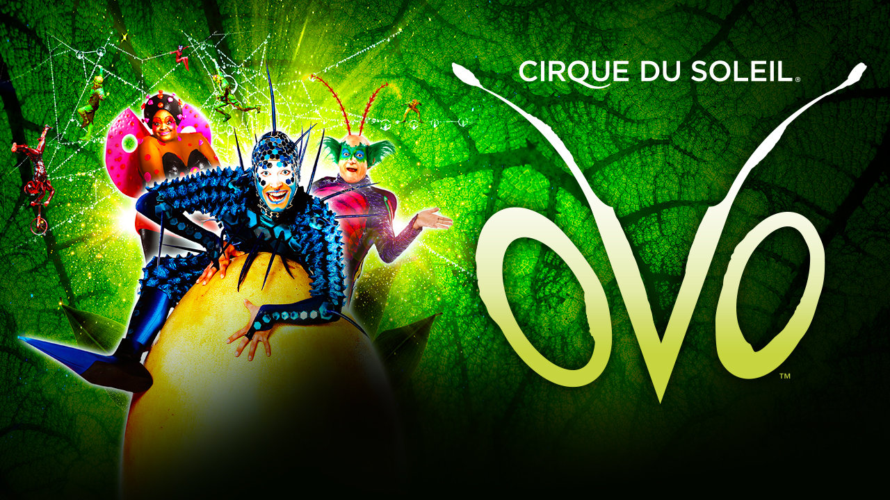 cirque du soleil ovo london discount tickets
