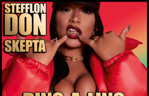stefflon don ding a ling